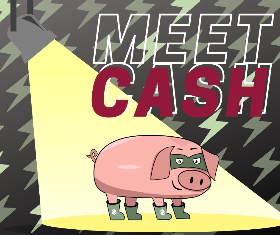 Cashpig sites